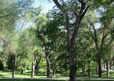 Roxbury South 1 Park